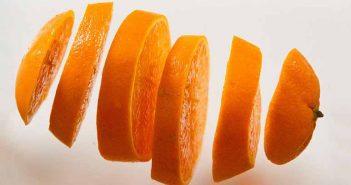 Naranja para las pulgas en gatos