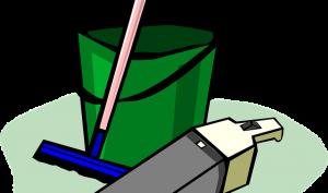 Remedios caseros para limpiar la casa con árbol de té