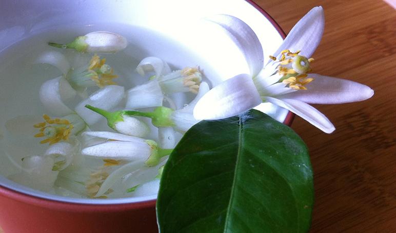 Cómo elaborar una esencia natural para perfumar el hogar - Trucos de hogar caseros