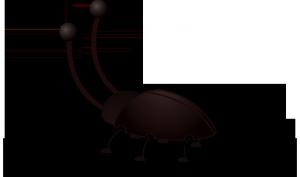 Eliminar cucarachas con amoniaco
