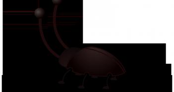 Ácido bórico para cucarachas