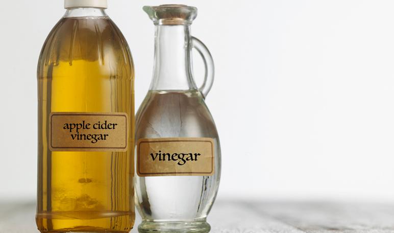 Cómo Eliminar Las Moscas Con Vinagre Trucos De Hogar Caseros