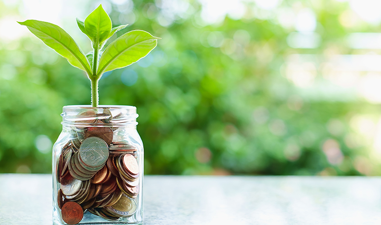 10 trucos para ahorrar en la cesta de la compra - Trucos de hogar caseros