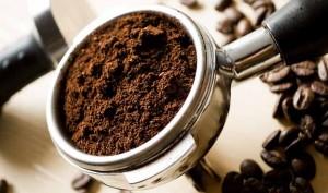 Café para las pulgas