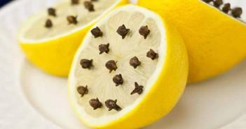 Limón y clavo para elaborar un repelente natural
