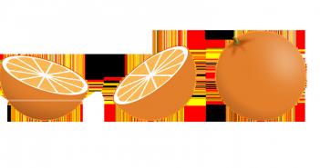 Cómo evitar la polilla con naranja