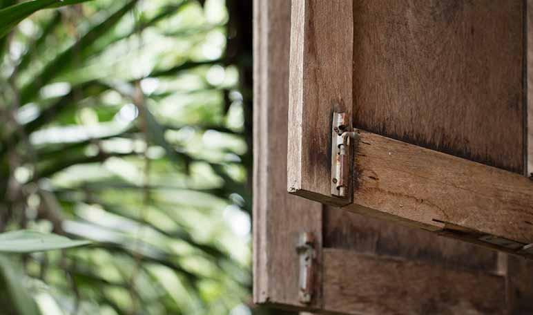 Persianas de madera en perfecto estado con linaza - Trucos de hogar caseros