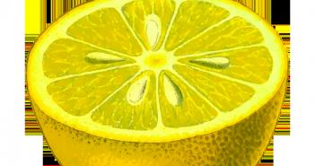 Veneno para garrapatas de limón