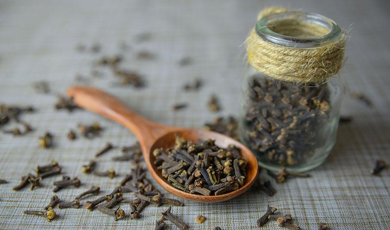 Remedios caseros para espantar a las avispas - Trucos de hogar caseros