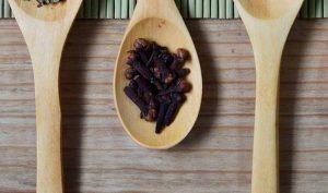 Eliminar hormigas del hogar con clavo de olor