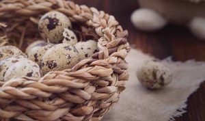 Truco para pelar huevos de codorniz con facilidad - Trucos de hogar caseros