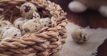 Truco para pelar huevos de codorniz con facilidad
