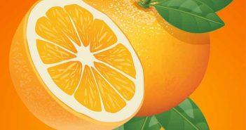 Cómo alejar a los gatos con naranja