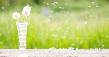 Flores para eliminar las manchas en la piel - Trucos de hogar caseros