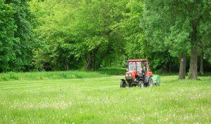 5 consejos para elegir el mejor tractor cortacésped para el jardín - Trucos de hogar caseros