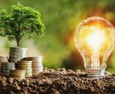 6 consejos para elegir una tarifa de luz económica